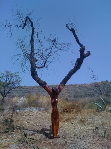 prachtige boom bewerkt met een kettingzaag door niel!