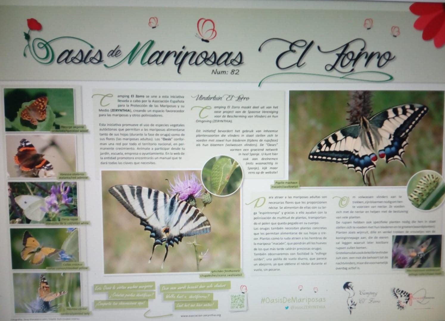 vlindertuin voor facebook